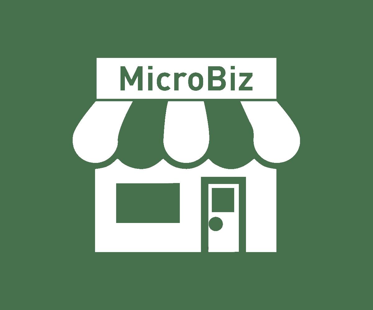 Windows – Payment Processing Options   Microbiz Cloud POS